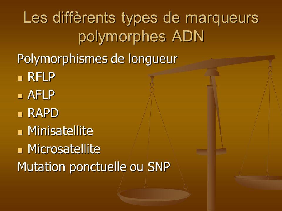 Les diffèrents types de marqueurs polymorphes ADN Polymorphismes de longueur RFLP RFLP AFLP AFLP RAPD RAPD Minisatellite Minisatellite Microsatellite