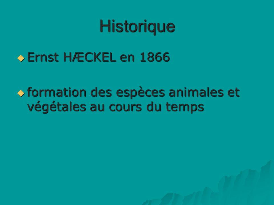 Historique Ernst HÆCKEL en 1866 Ernst HÆCKEL en 1866 formation des espèces animales et végétales au cours du temps formation des espèces animales et végétales au cours du temps
