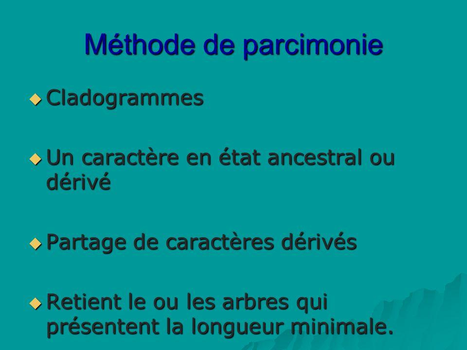 Méthode de parcimonie Cladogrammes Cladogrammes Un caractère en état ancestral ou dérivé Un caractère en état ancestral ou dérivé Partage de caractères dérivés Partage de caractères dérivés Retient le ou les arbres qui présentent la longueur minimale.
