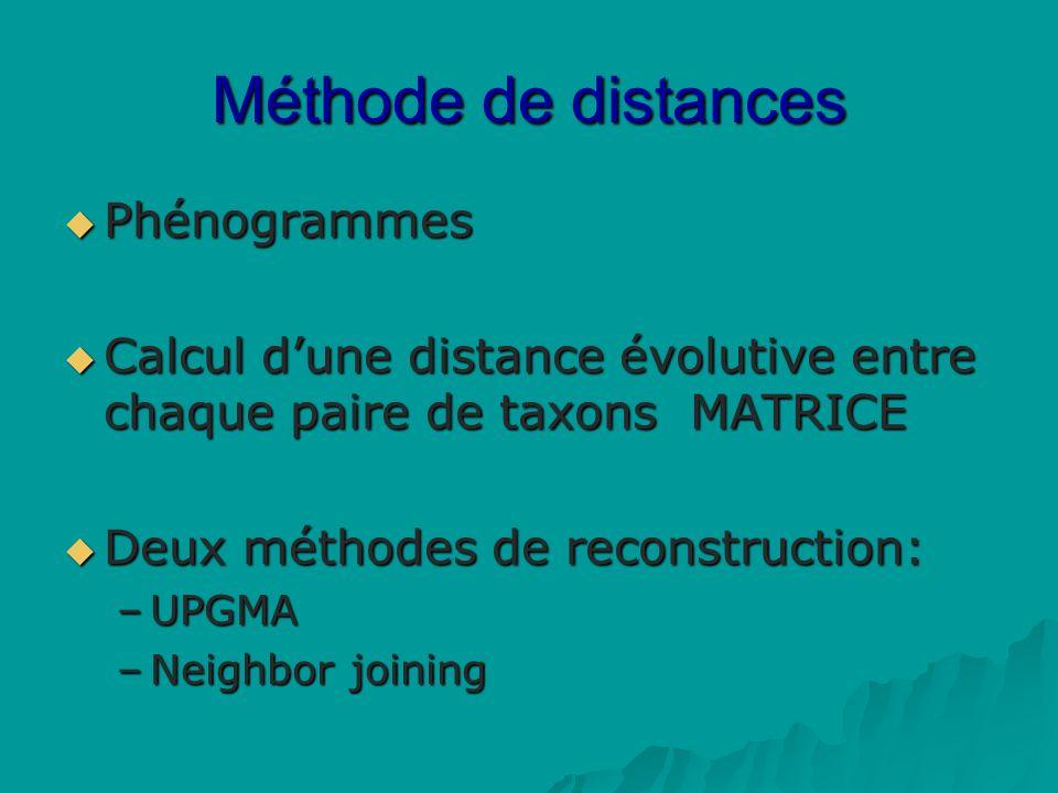 Méthode de distances Phénogrammes Phénogrammes Calcul dune distance évolutive entre chaque paire de taxons MATRICE Calcul dune distance évolutive entre chaque paire de taxons MATRICE Deux méthodes de reconstruction: Deux méthodes de reconstruction: –UPGMA –Neighbor joining