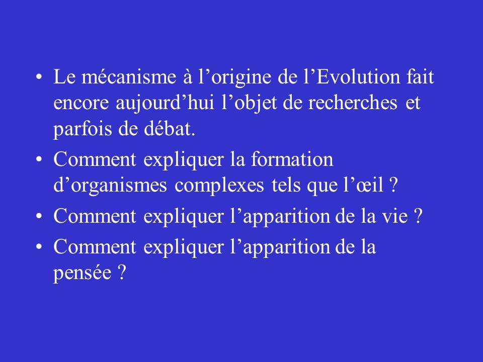 Le mécanisme à lorigine de lEvolution fait encore aujourdhui lobjet de recherches et parfois de débat. Comment expliquer la formation dorganismes comp