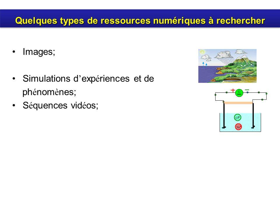 Images; Simulations d exp é riences et de ph é nom è nes; S é quences vid é os; Quelques types de ressources numériques à rechercher