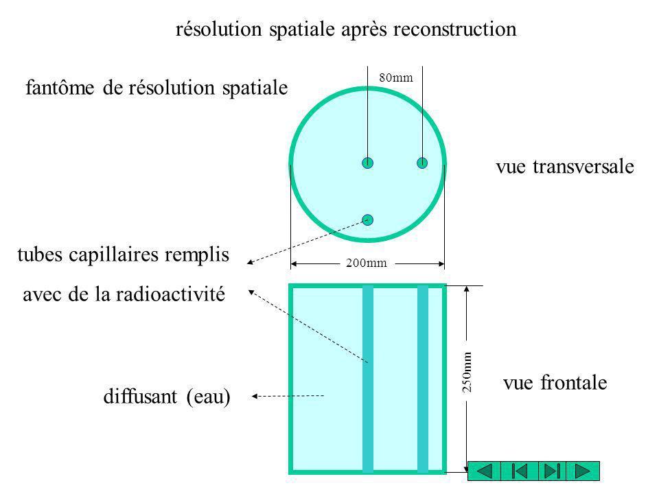 fantôme de résolution spatiale vue transversale vue frontale 80mm 250mm 200mm tubes capillaires remplis avec de la radioactivité diffusant (eau) résol