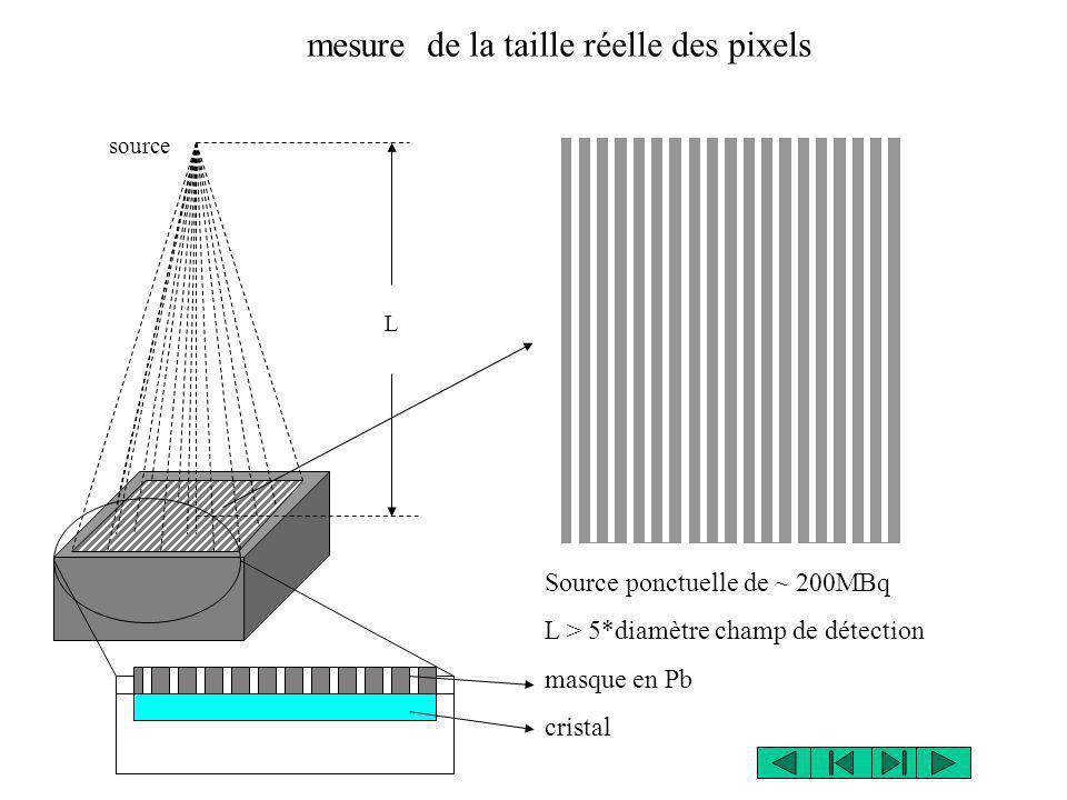source L mesure de la taille réelle des pixels Source ponctuelle de ~ 200MBq L > 5*diamètre champ de détection masque en Pb cristal