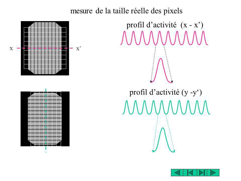 x x profil dactivité (x - x) profil dactivité (y -y) mesure de la taille réelle des pixels