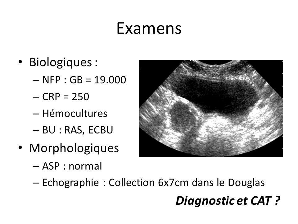 Examens Biologiques : – NFP : GB = 19.000 – CRP = 250 – Hémocultures – BU : RAS, ECBU Morphologiques – ASP : normal – Echographie : Collection 6x7cm d