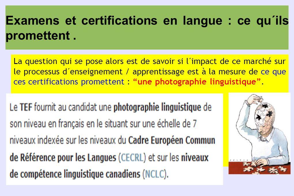 Examens et certifications en langue : ce qu´ils promettent. La question qui se pose alors est de savoir si l´impact de ce marché sur le processus d´en