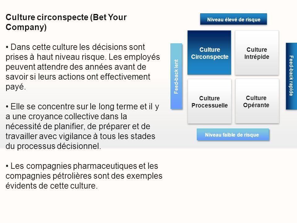 Culture circonspecte (Bet Your Company) Dans cette culture les décisions sont prises à haut niveau risque. Les employés peuvent attendre des années av