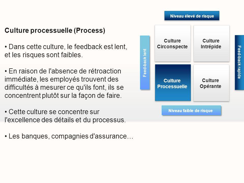 Culture processuelle (Process) Dans cette culture, le feedback est lent, et les risques sont faibles. En raison de l'absence de rétroaction immédiate,