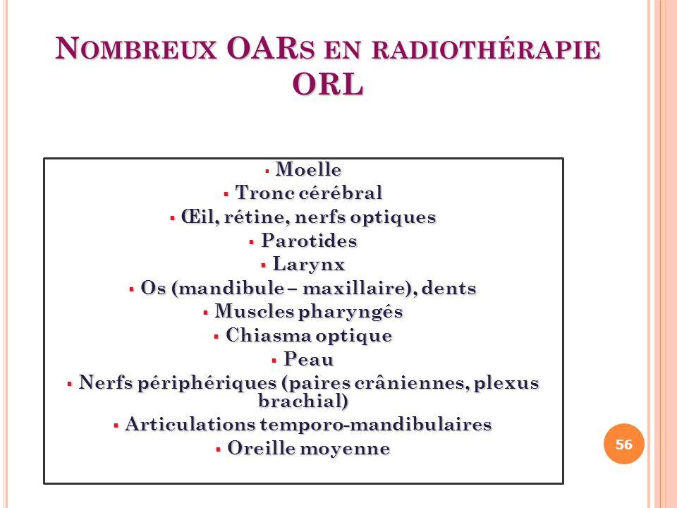 N OMBREUX OAR S EN RADIOTHÉRAPIE ORL Moelle Tronc cérébral Tronc cérébral Œil, rétine, nerfs optiques Œil, rétine, nerfs optiques Parotides Parotides