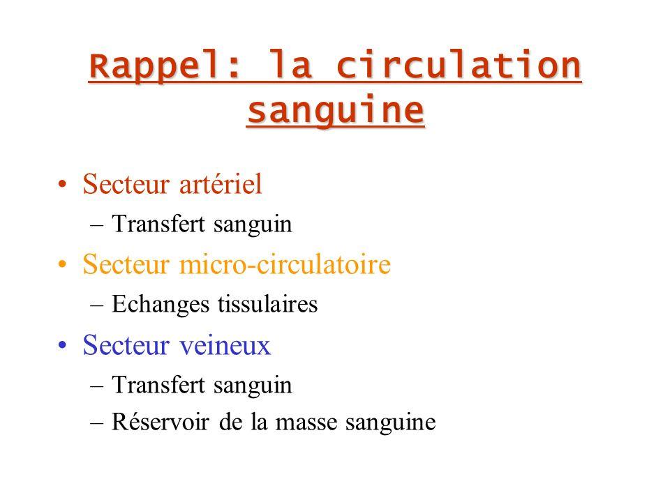Rappel: la circulation sanguine Secteur artériel –Transfert sanguin Secteur micro-circulatoire –Echanges tissulaires Secteur veineux –Transfert sanguin –Réservoir de la masse sanguine