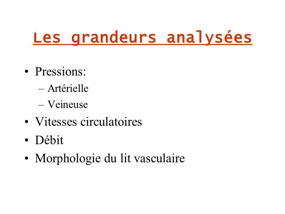 Les grandeurs analysées Pressions: –Artérielle –Veineuse Vitesses circulatoires Débit Morphologie du lit vasculaire