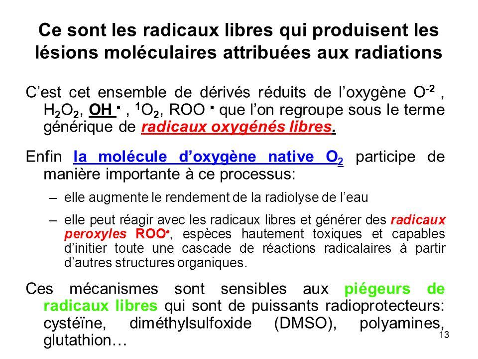 13 Ce sont les radicaux libres qui produisent les lésions moléculaires attribuées aux radiations Cest cet ensemble de dérivés réduits de loxygène O -2, H 2 O 2, OH, 1 O 2, ROO que lon regroupe sous le terme générique de radicaux oxygénés libres.