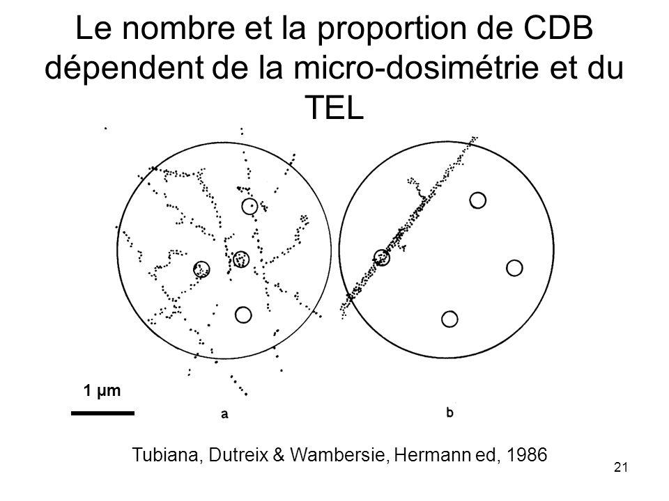21 Le nombre et la proportion de CDB dépendent de la micro-dosimétrie et du TEL Tubiana, Dutreix & Wambersie, Hermann ed, 1986 1 µm
