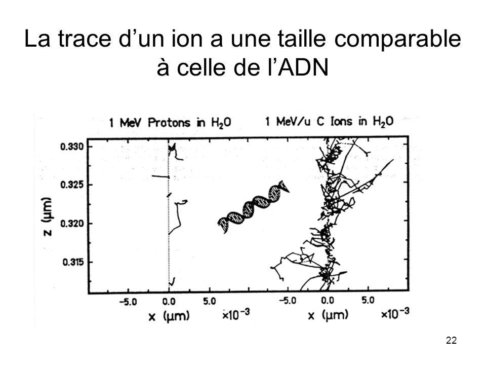 22 La trace dun ion a une taille comparable à celle de lADN