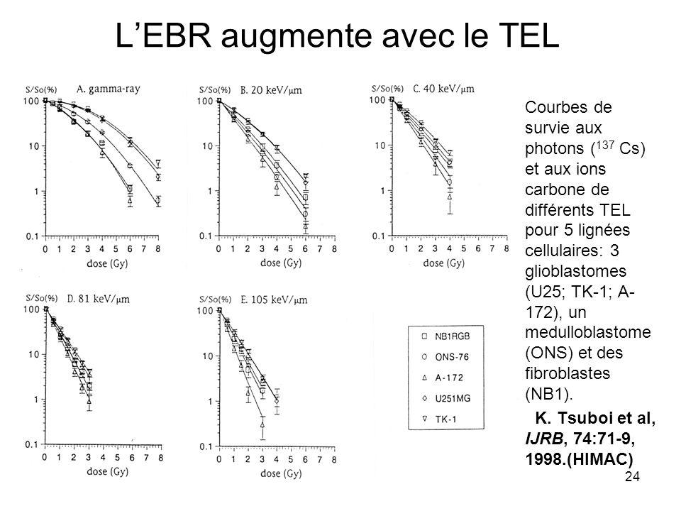 24 LEBR augmente avec le TEL Courbes de survie aux photons ( 137 Cs) et aux ions carbone de différents TEL pour 5 lignées cellulaires: 3 glioblastomes (U25; TK-1; A- 172), un medulloblastome (ONS) et des fibroblastes (NB1).