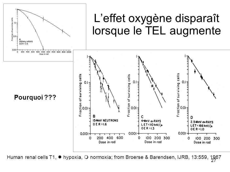 27 Leffet oxygène disparaît lorsque le TEL augmente Human renal cells T1, hypoxia, normoxia; from Broerse & Barendsen, IJRB, 13:559, 1967 Pourquoi ???