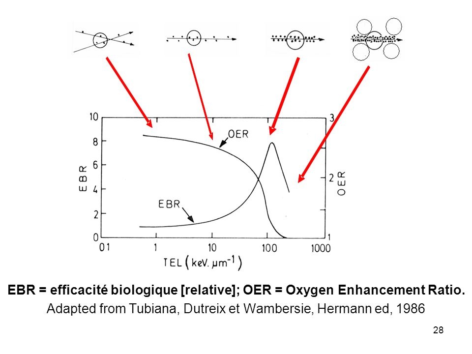 28 EBR = efficacité biologique [relative]; OER = Oxygen Enhancement Ratio.