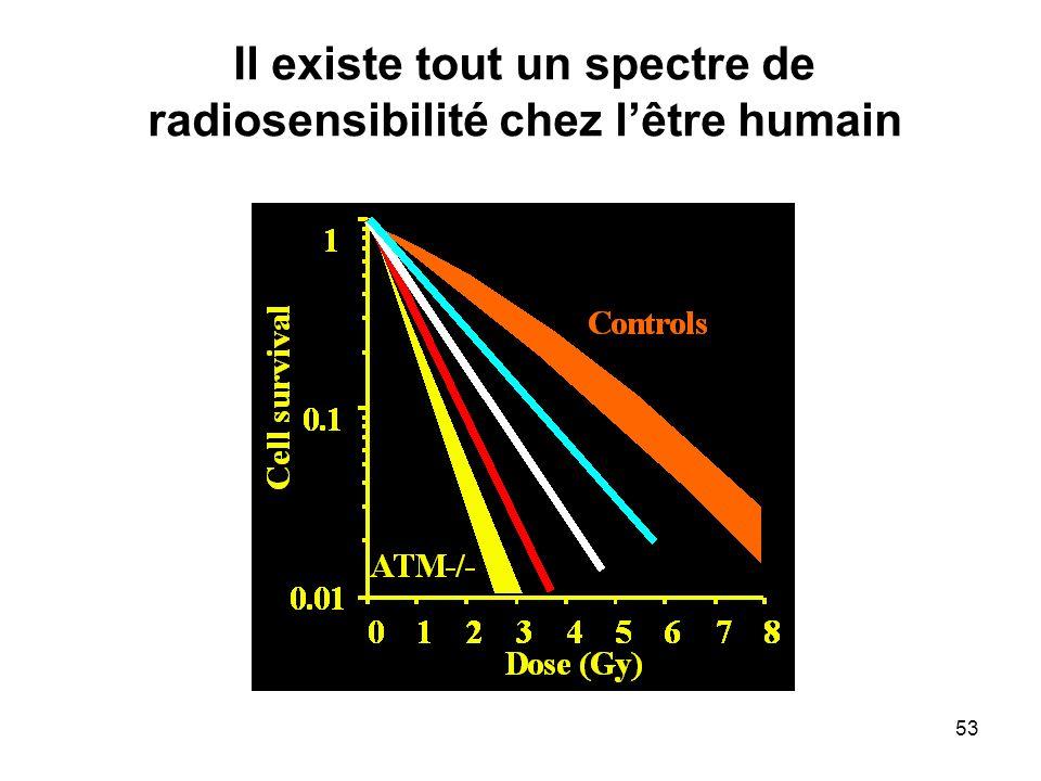 53 Il existe tout un spectre de radiosensibilité chez lêtre humain