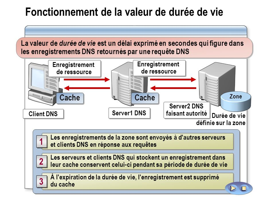 Fonctionnement de la valeur de durée de vie La valeur de durée de vie est un délai exprimé en secondes qui figure dans les enregistrements DNS retournés par une requête DNS Les enregistrements de la zone sont envoyés à d autres serveurs et clients DNS en réponse aux requêtes 1 1 Les serveurs et clients DNS qui stockent un enregistrement dans leur cache conservent celui-ci pendant sa période de durée de vie 2 2 À l expiration de la durée de vie, l enregistrement est supprimé du cache 3 3 Zone Durée de vie définie sur la zone Server1 DNS Client DNS Server2 DNS faisant autorité Server2 DNS faisant autorité Cache Enregistrement de ressource