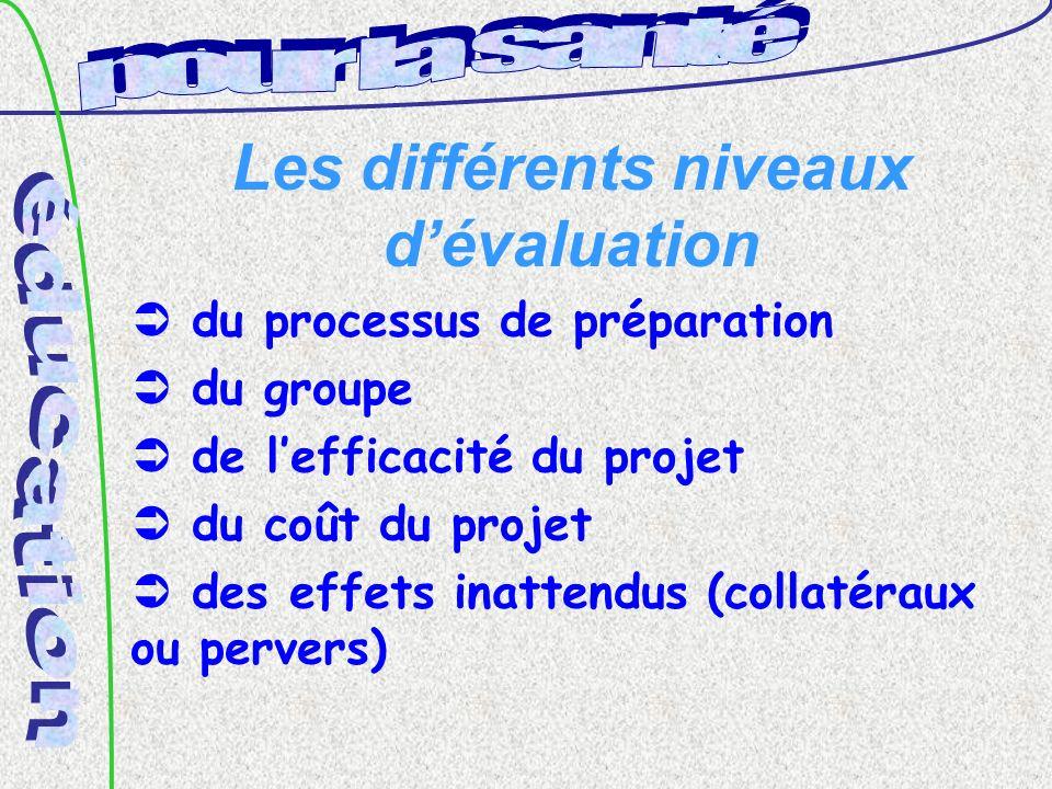 Les différents niveaux dévaluation du processus de préparation du groupe de lefficacité du projet du coût du projet des effets inattendus (collatéraux ou pervers)