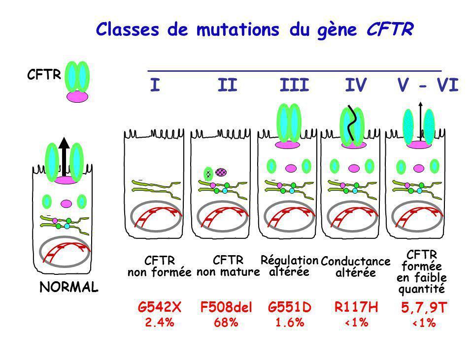 Classes de mutations du gène CFTR NORMAL CFTR non formée I G542X 2.4% CFTR non mature II F508del 68% Régulation altérée III G551D 1.6% Conductance alt