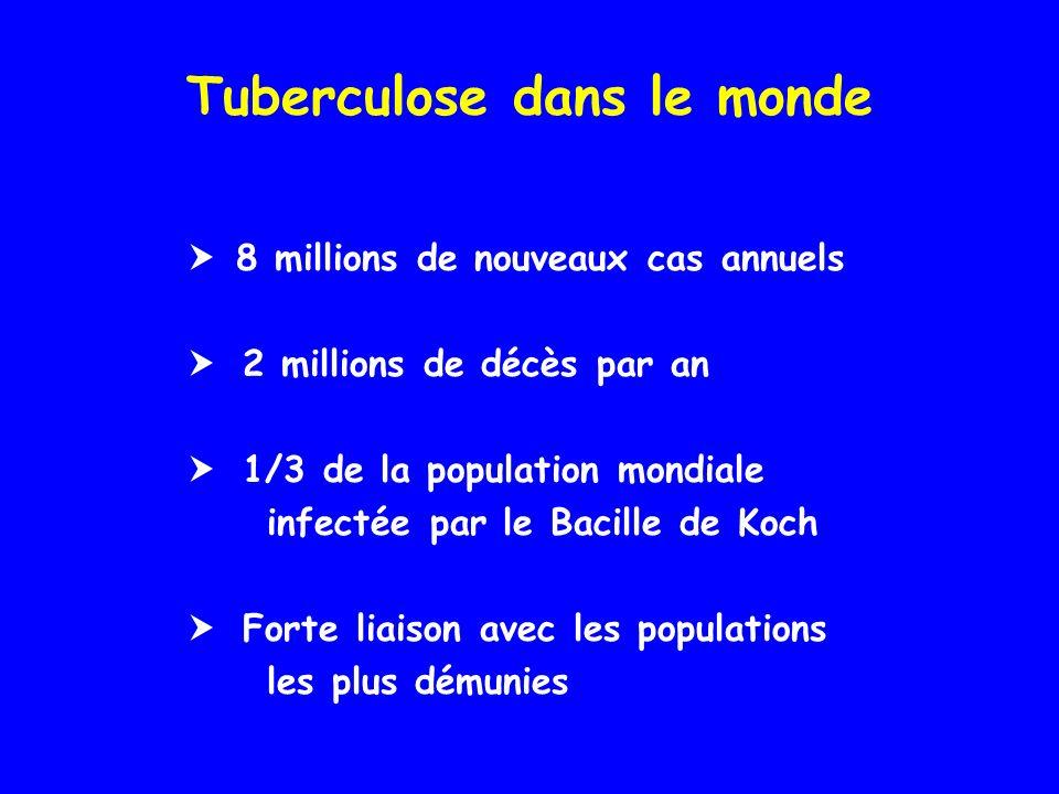Tuberculose dans le monde 8 millions de nouveaux cas annuels 2 millions de décès par an 1/3 de la population mondiale infectée par le Bacille de Koch