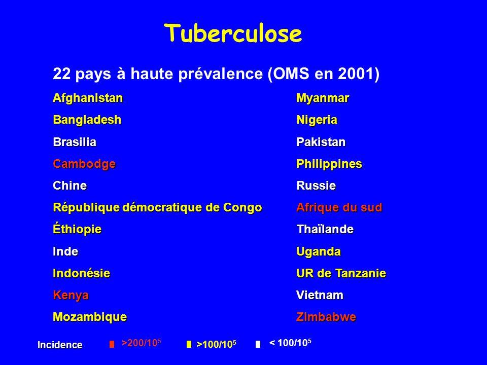 Tuberculose 22 pays à haute prévalence (OMS en 2001) AfghanistanMyanmar BangladeshNigeria BrasiliaPakistan CambodgePhilippines ChineRussie République