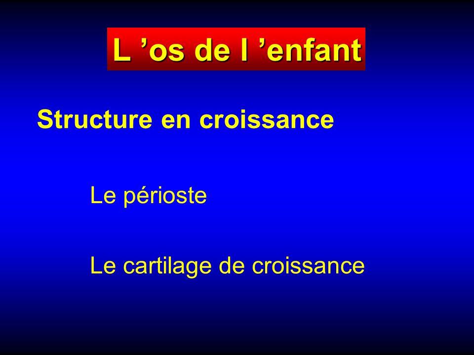 L os de l enfant Structure en croissance Le périoste Le cartilage de croissance