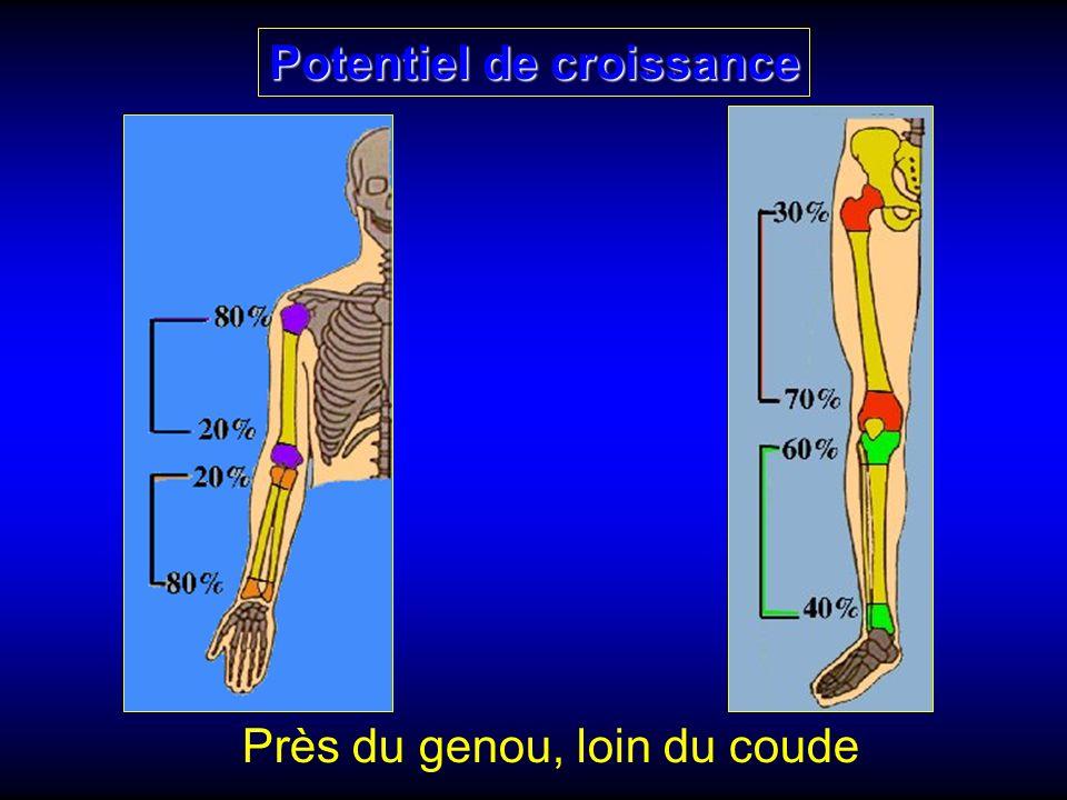 Potentiel de croissance Près du genou, loin du coude