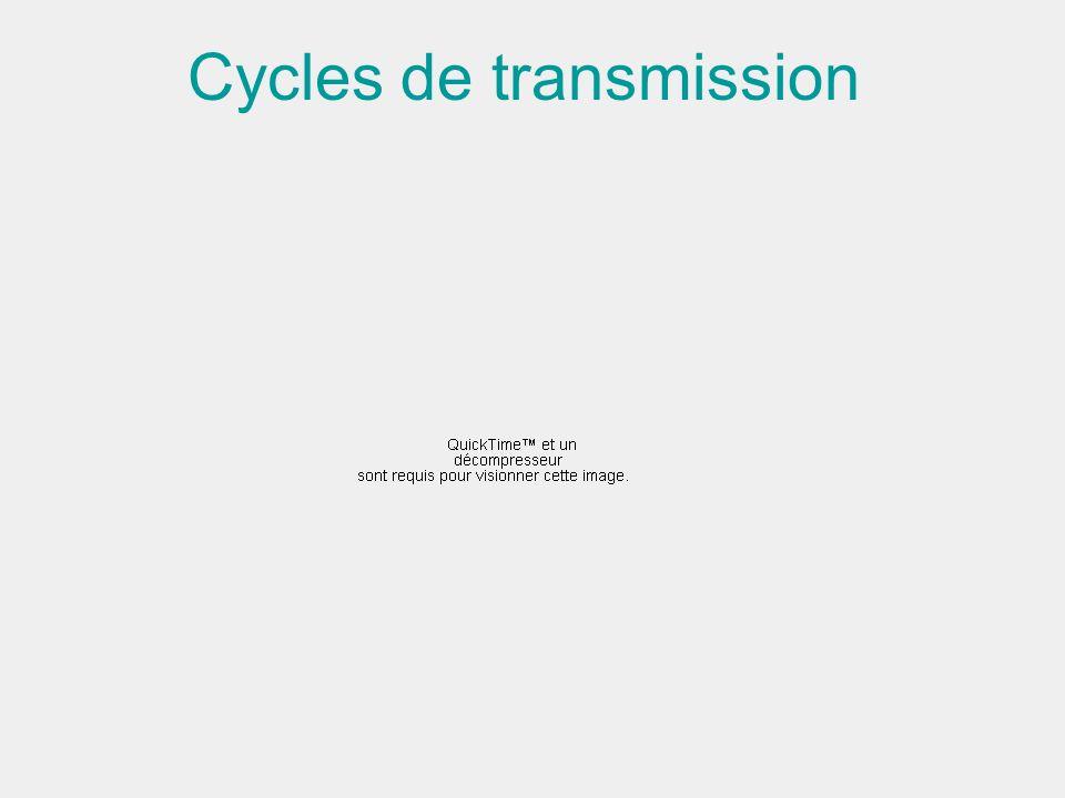 Cycles de transmission