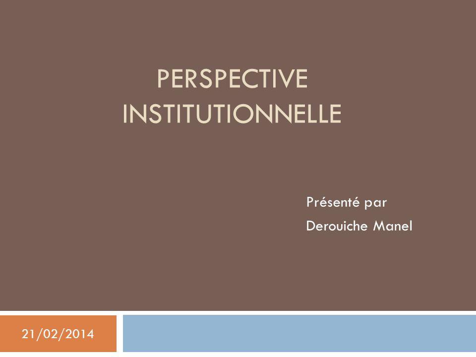 PERSPECTIVE INSTITUTIONNELLE Présenté par Derouiche Manel 21/02/2014