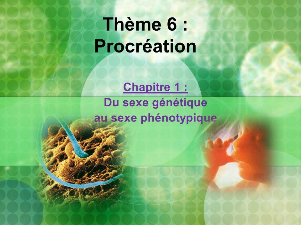 Thème 6 : Procréation Chapitre 1 : Du sexe génétique au sexe phénotypique