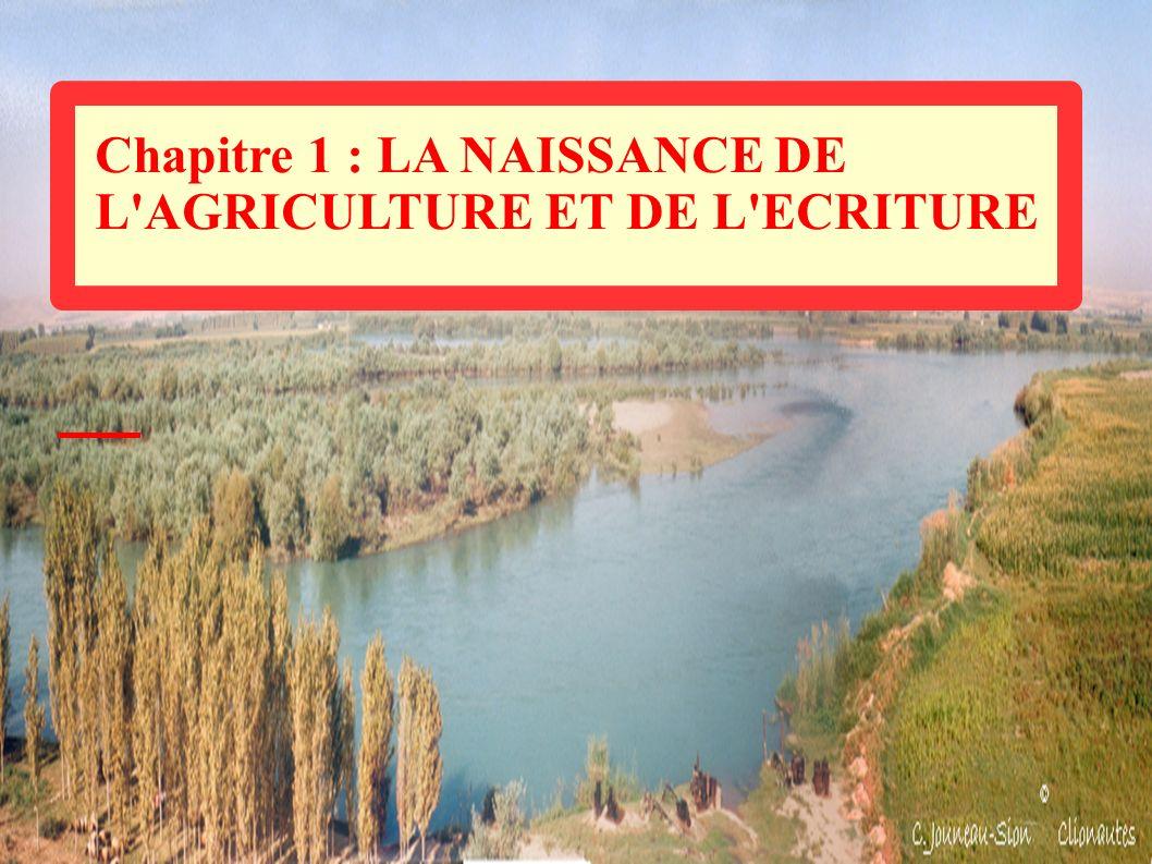 Chapitre 1 : LA NAISSANCE DE L'AGRICULTURE ET DE L'ECRITURE