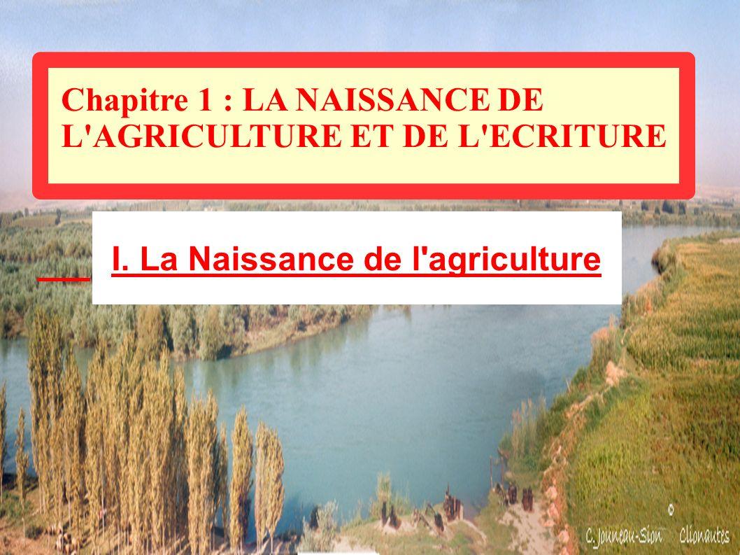 Chapitre 1 : LA NAISSANCE DE L'AGRICULTURE ET DE L'ECRITURE I. La Naissance de l'agriculture