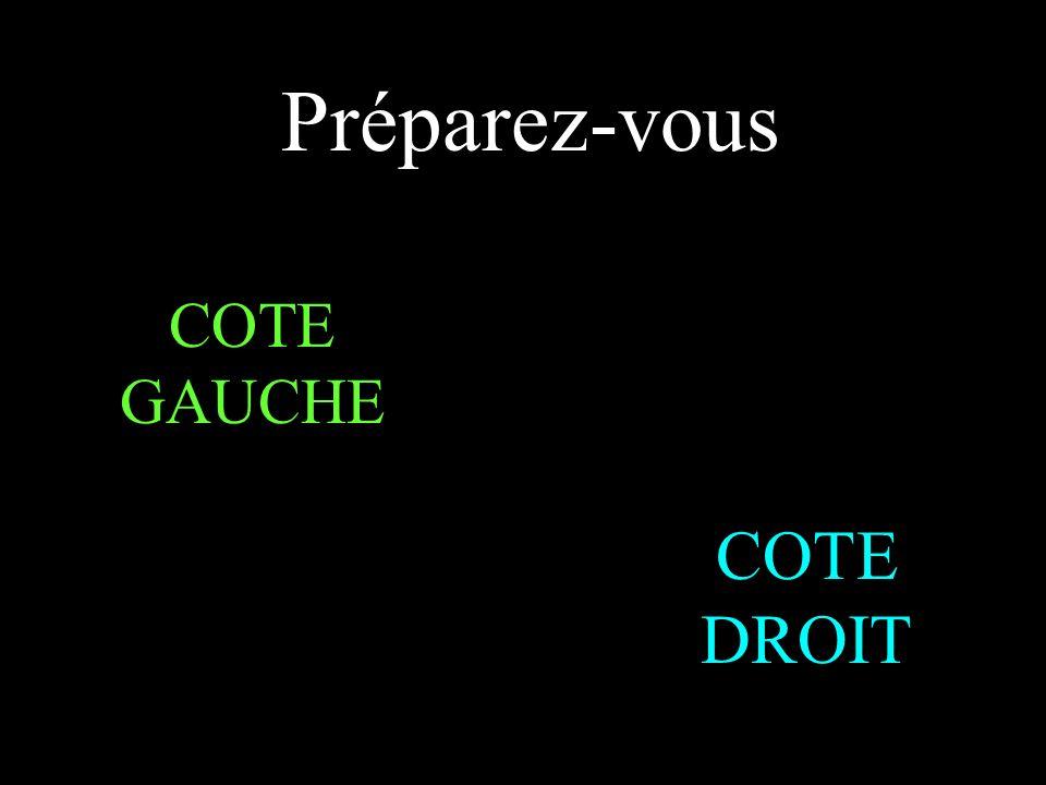 CALCUL MENTAL CHOMAT Françoise collège Saint Eutrope Aix en Provence Pour éviter les coups d oeil inopportuns aux conséquences parfois fâcheuses deux élèves voisins répondent aux questions de couleurs différentes .