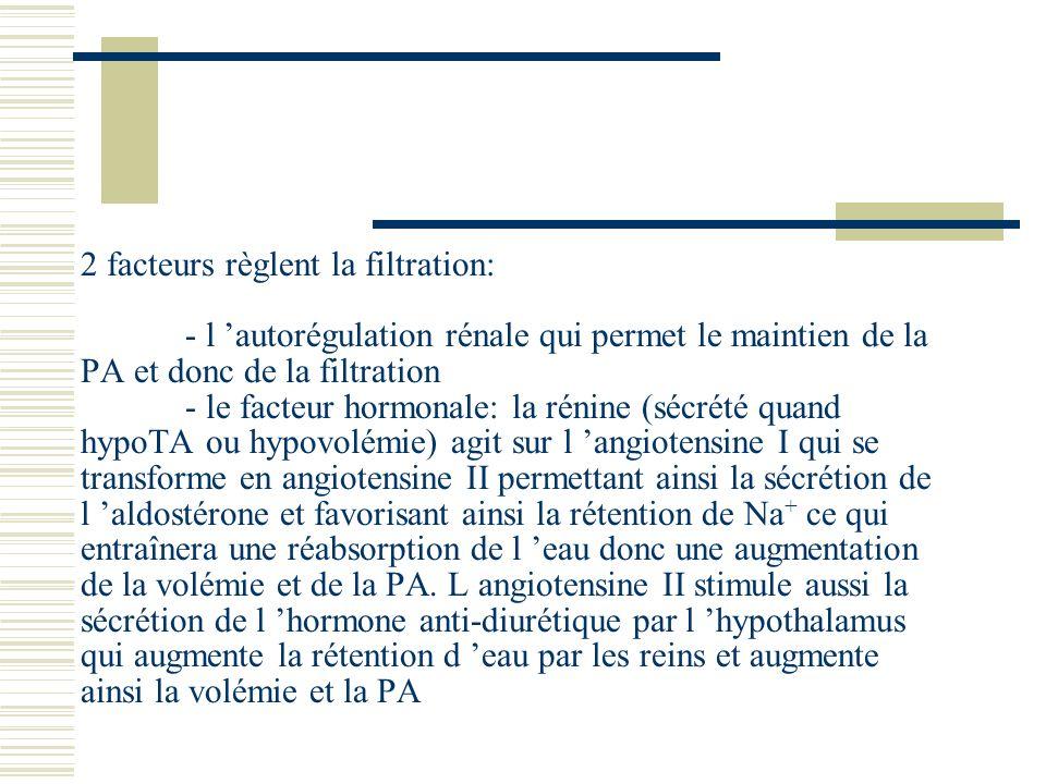 2 facteurs règlent la filtration: - l autorégulation rénale qui permet le maintien de la PA et donc de la filtration - le facteur hormonale: la rénine