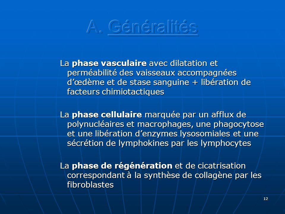 12 La phase vasculaire avec dilatation et perméabilité des vaisseaux accompagnées dœdème et de stase sanguine + libération de facteurs chimiotactiques