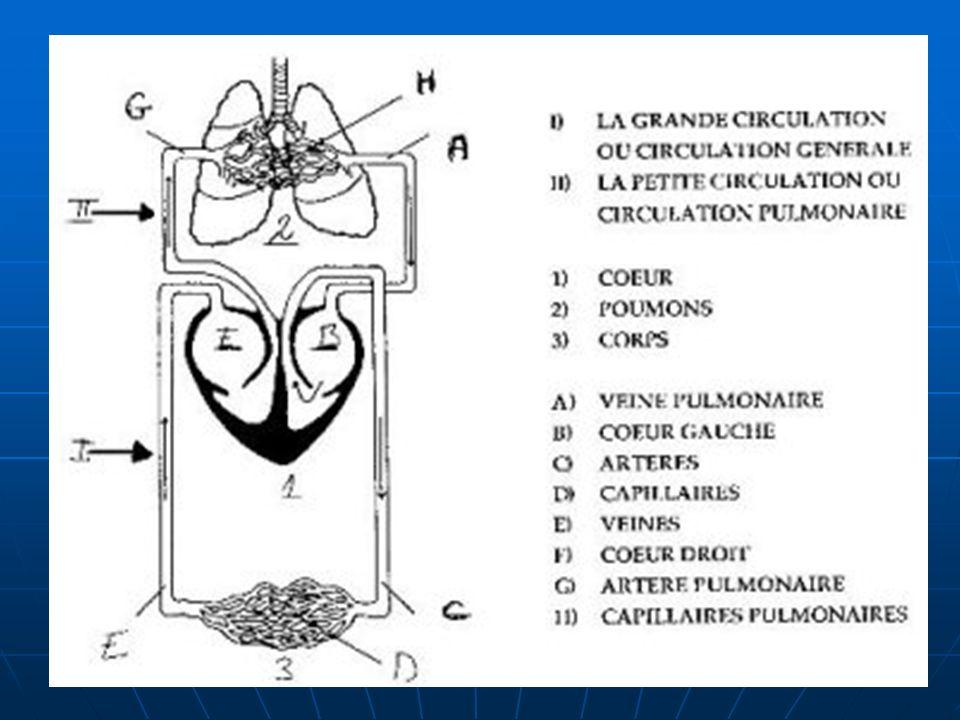 ETIOLOGIES OAP EST TOUJOURS DU A UNE INSUFFISANCE DU CŒUR GAUCHE (ventricule et/ou oreillette) INSUFFISANCE VENTRICULAIRE GAUCHE : INSUFFISANCE VENTRICULAIRE GAUCHE : CARDIOPATHIE VALVULAIRE : rétrécissement aortique, insuffisance aortique, insuffisance mitrale, pas le rétrécissement mitral!!.