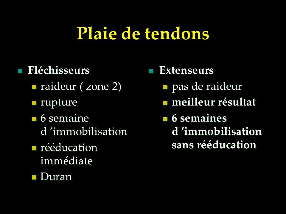 Plaie de tendons Fléchisseurs Fléchisseurs raideur ( zone 2) raideur ( zone 2) rupture rupture 6 semaine d immobilisation 6 semaine d immobilisation r