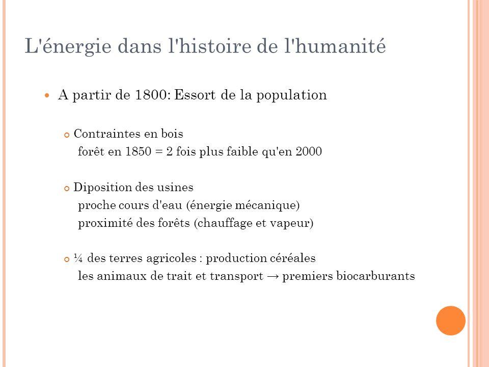 A partir de 1800: Essort de la population Contraintes en bois forêt en 1850 = 2 fois plus faible qu'en 2000 Diposition des usines proche cours d'eau (