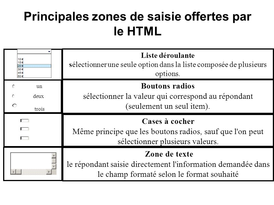Exemple denquête par site web