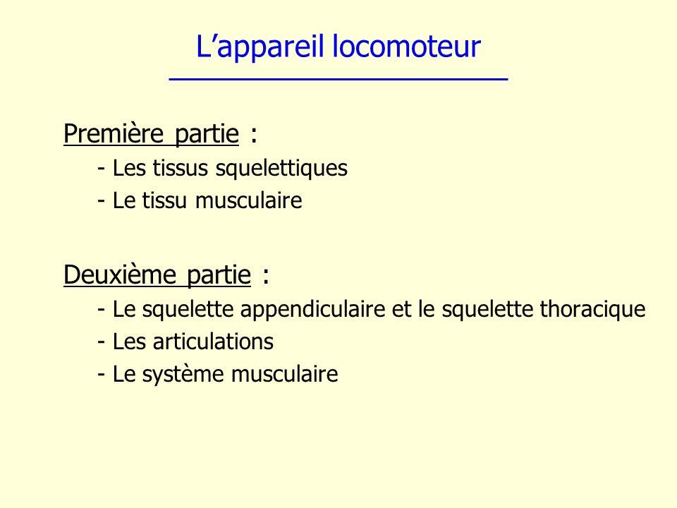 Lappareil locomoteur Première partie : - Les tissus squelettiques - Le tissu musculaire Deuxième partie : - Le squelette appendiculaire et le squelett