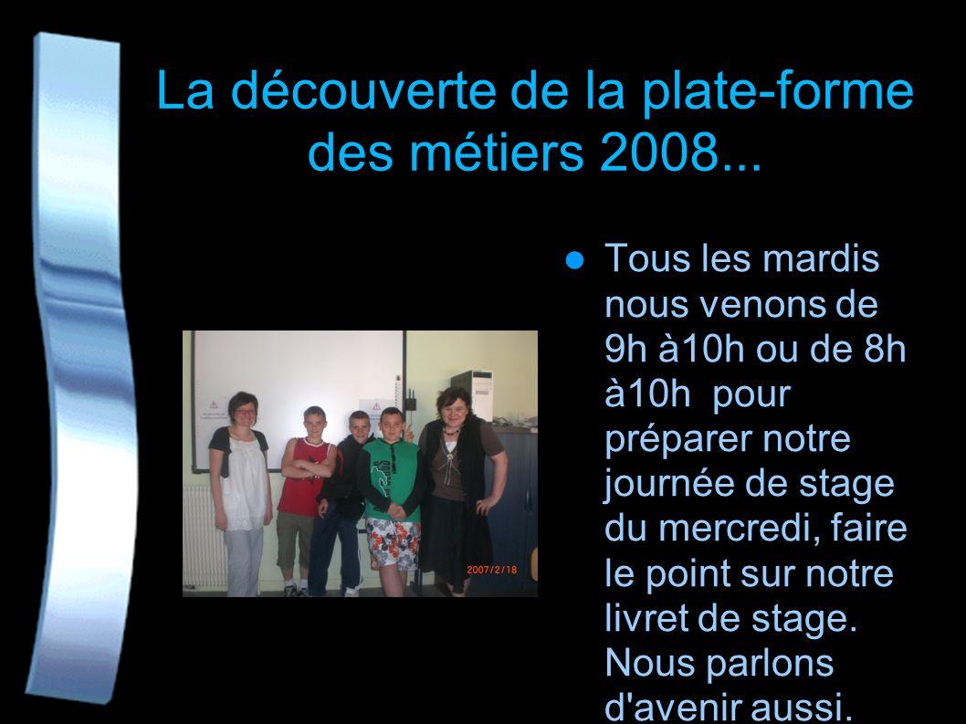 La 4ème Plate forme des métiers Nous sommes tous élèves du collège Boris Vian de Lille et avons intégré la Plate forme qui a été mise en place en janv