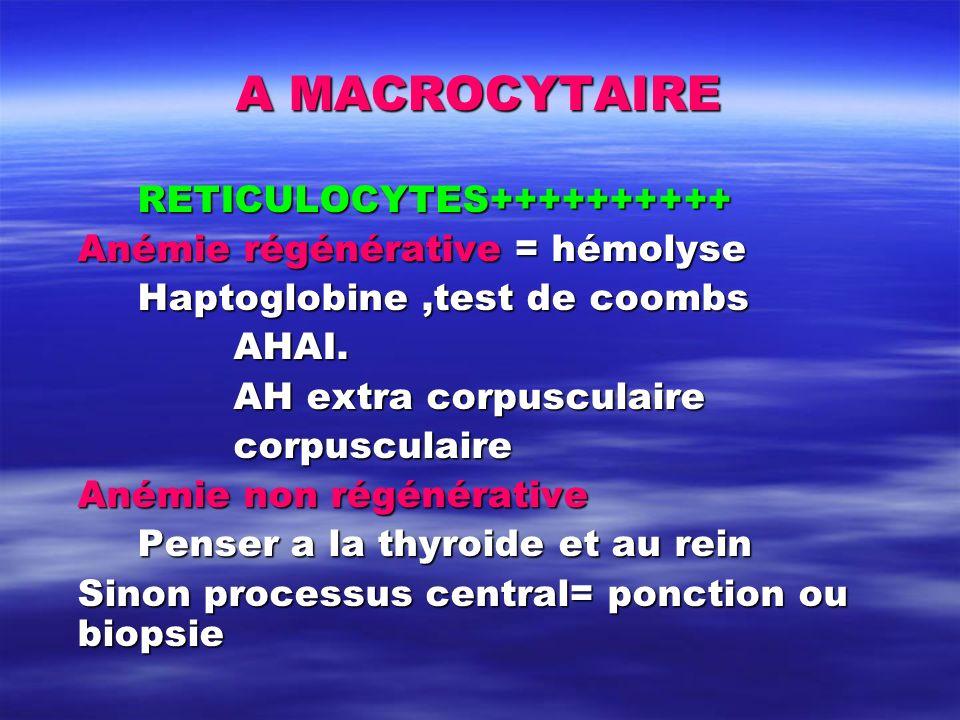 A MACROCYTAIRE RETICULOCYTES++++++++++ Anémie régénérative = hémolyse Haptoglobine,test de coombs AHAI. AH extra corpusculaire corpusculaire Anémie no