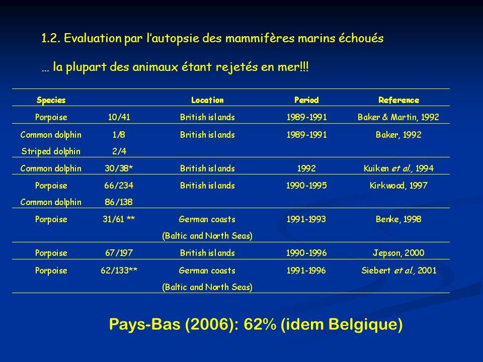 1.2. Evaluation par lautopsie des mammifères marins échoués … la plupart des animaux étant rejetés en mer!!! Pays-Bas (2006): 62% (idem Belgique)