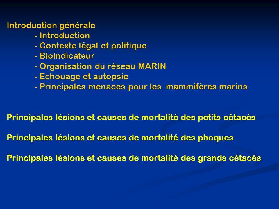 Introduction générale - Introduction - Contexte légal et politique - Bioindicateur - Organisation du réseau MARIN - Echouage et autopsie - Principales