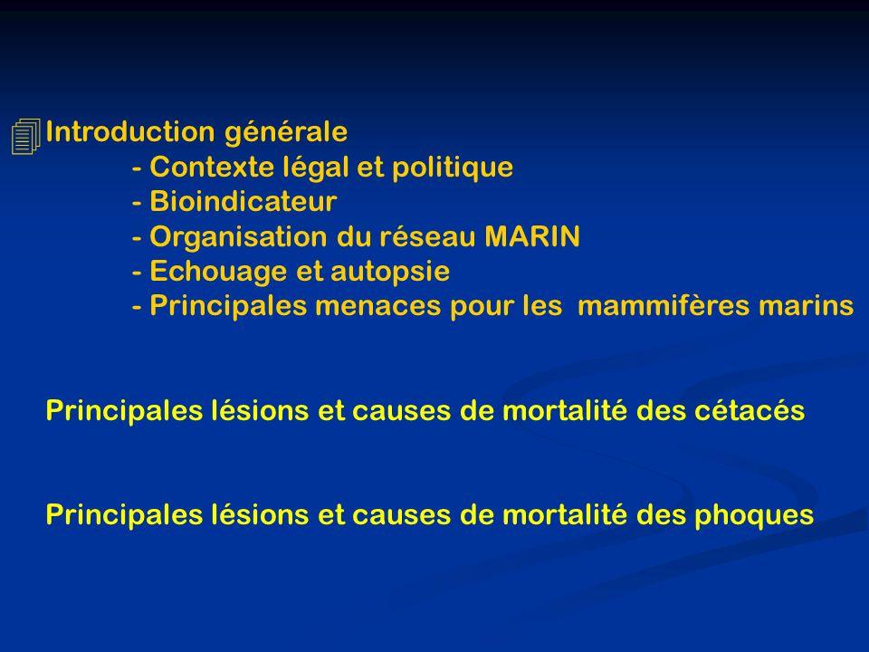 4 Introduction générale - Contexte légal et politique - Bioindicateur - Organisation du réseau MARIN - Echouage et autopsie - Principales menaces pour