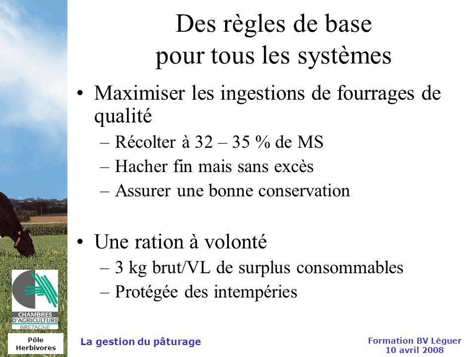 Pôle Herbivores Formation BV Léguer 10 avril 2008 La gestion du pâturage Des règles de base pour tous les systèmes Maximiser les ingestions de fourrag