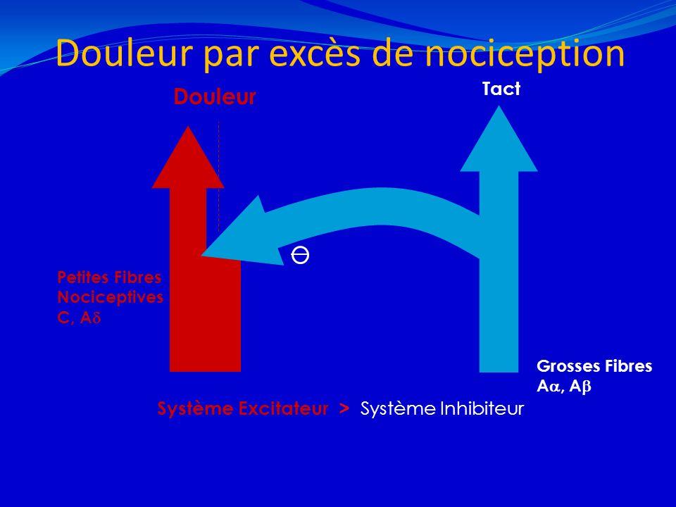 Douleur par excès de nociception 21/02/201410 Grosses Fibres A, A Douleur Petites Fibres Nociceptives C, A Tact Système Excitateur > Système Inhibiteu